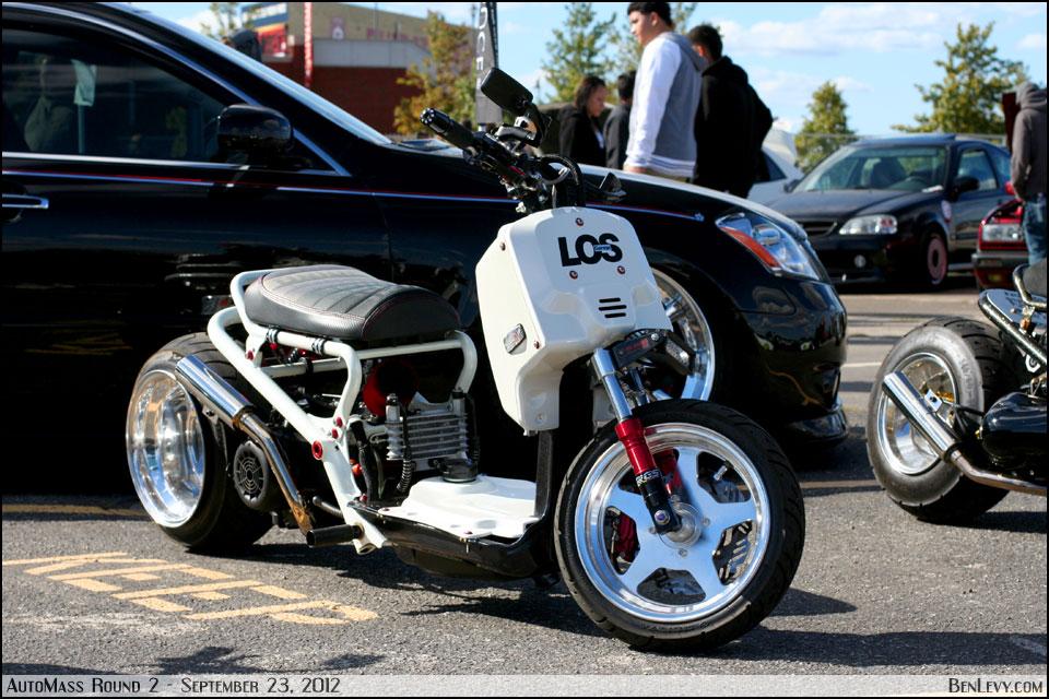 Modified Honda Ruckus Benlevy Com