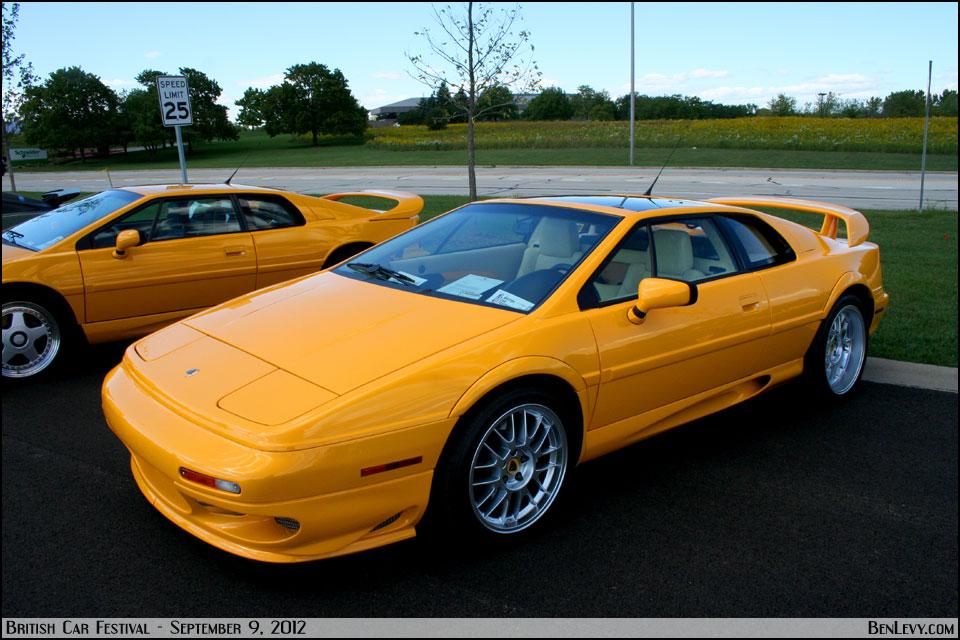 Yellow Lotus Esprit Benlevy Com